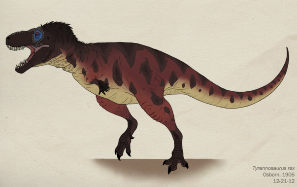the reasons why the tyrannosaurus rex is my favorite dinosaur Why were dinosaurs so big update cancel answer wiki 28 answers but i'd like to inject my personal favorite factor: reaction speed the tyrannosaurus rex is estimated to be around the same weight as a bull african elephant.