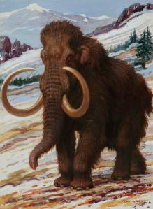 the-woolly-mammoth-is-a-close-relative-charles-r-knight
