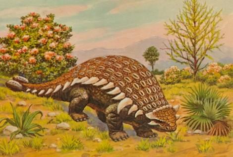 Ankylosaurus-postcard-1000x6743-700x471.jpg